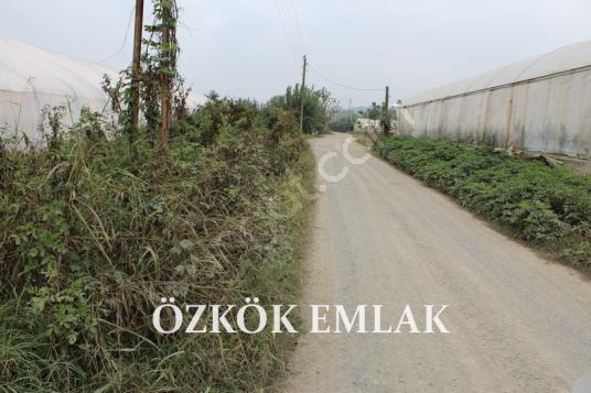 Kadıköy'de 3 kat imarlı arsa - Arsa
