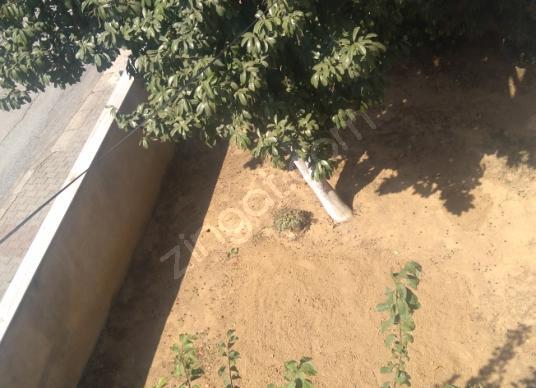 Darıca Abdi İpekçi'de Kiralık Daire 3+1 üçüncü kat