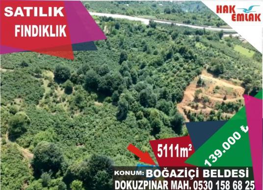 Hak Emlaktan Düzce Akçakoca Yolu Üzeri Satılık 5111 m2 Fındık