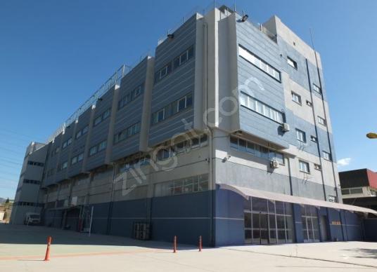 5.000 m2 Kapalı,3.000 m2 Açık alanlı,Komple Kiralık Bina