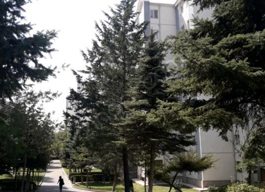 Etimesgut Oğuzlar'da Satılık Daire 3+1 Arakat Asansörlü
