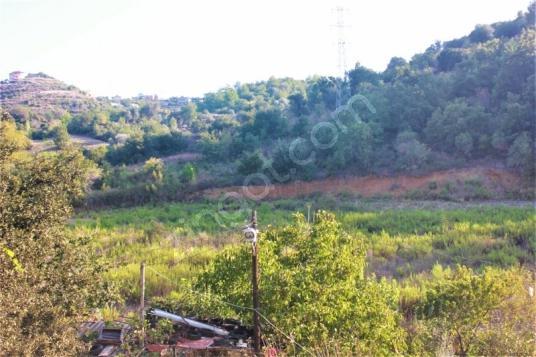 Alanya bölge uzmanından Demirtaş'da Satılık 5 dönüm Bahçe