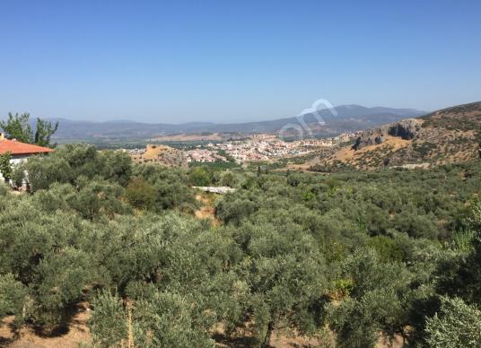 Selçuk Abuhayat'ta Satılık İçinde Ev Olan 13 Dönüm Verimli Bahçe - Manzara