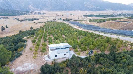 Önder Sağlam dan Burdur Bucak Kestel Köyünde Satılık Bahçe