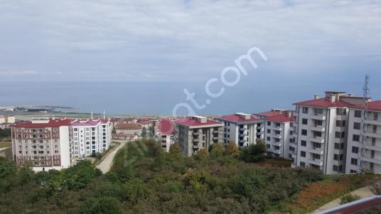 Trabzon Pelitlide Satılık Değerli 2 Arsa Bitişik