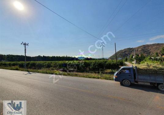 Dalaman Altıntas mah. satılık 36.000 m2 tarla - Arsa