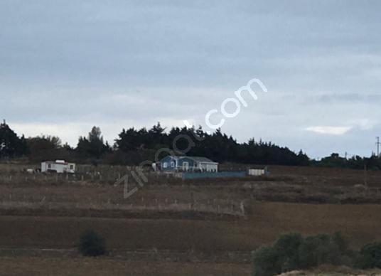 Çatalca Elbasan'da Satılık Müstakil Ev - Arsa