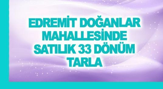 EDREMİT DOĞANLAR MAHALLESİNDE SATILIK 33 DÖNÜM TARLA - Logo