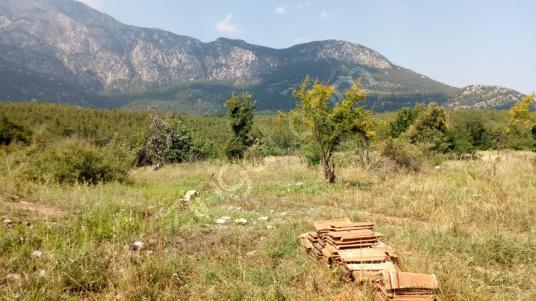 Antalya Kemer Çamyuvada satılık 7000 m2 arsa