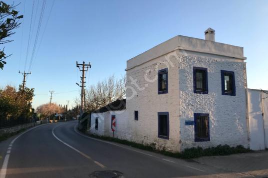 İçinde Ev ve Kuyusu Olan Narenciye Bahçesi - Sokak Cadde Görünümü