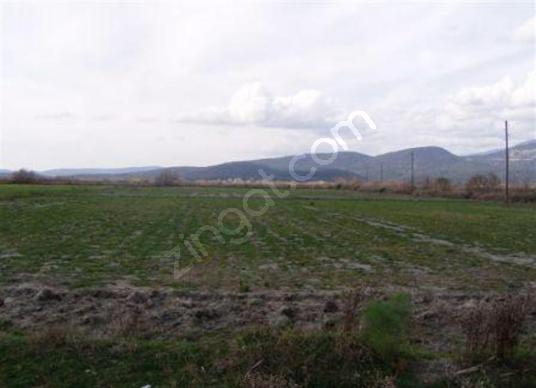 Köyceğiz Beyobası nda 6040 m2 verimli arazi satılık