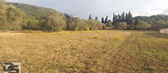 Urla Kalabak'ta Kadastral Yolu Bulunan Yatırımlık Arazi - Arsa