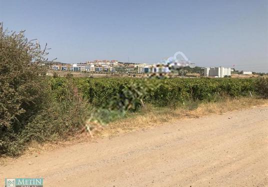 Muradiye Yağcılar CBÜ Kampüsü Karşısı 932 m2 Hobi Bahçesi