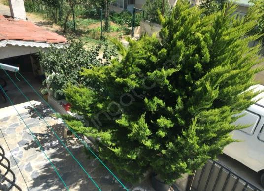 SİLİVRİ SELİMPAŞA YENİ İTFAYİYE ARKASI KAVAKLI YOLA CEPHE BİNA - Bahçe