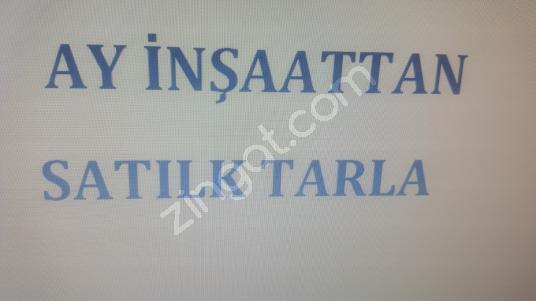 ALANYA DA SATILIK KELEPİR TARLA - Logo