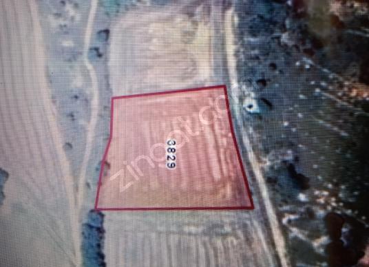 Pınarhisar Kaynarca Bld. (Akarlar)'da Satılık Bahçe - Harita