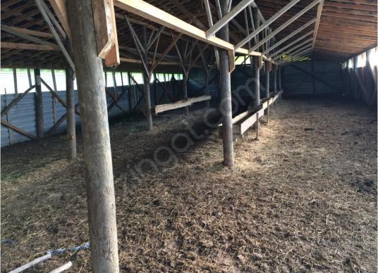 UZMANLAR'dan Satılık Çiftlik ve Arazi 9047 m2 Karamürsel Akçatta - Çocuk Oyun Alanı