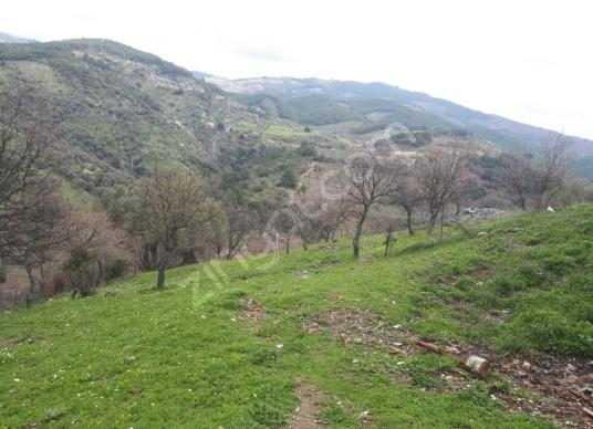 Çeşme Alaçatı Germiyan'da Satılık Arazi - Arsa