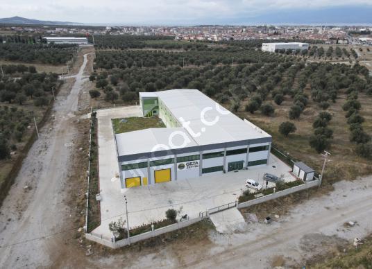 AGB'DEN, BURHANİYE'DE SATILIK ZEYTİN/İMALATHANE FABRİKASI