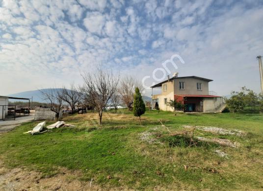 Milas İçme'de Satılık Hazır Üretim Çiftliği - Arsa