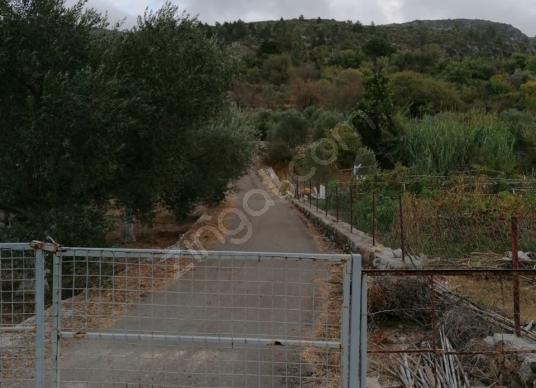TT EMLAK MARMARİS SÖĞÜT KÖYÜ MERKEZDE SATILIK 236 M2 TARLA - Balkon - Teras
