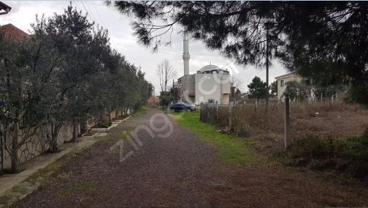 Yalova Altınova Kaytazdere'de Satılık 293 M2 İmarlı Arsa - Sokak Cadde Görünümü