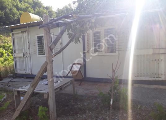 Pozantı Ömerli'de Satılık Bahçe - Bahçe