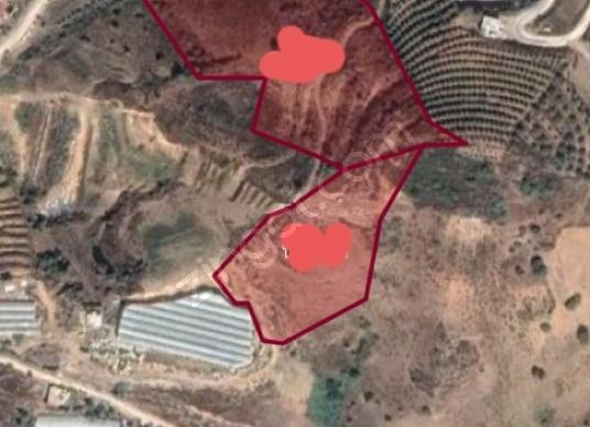 Alanya İmamlı'da Satılık 33.000 m2 satılık arazi - Kat Planı