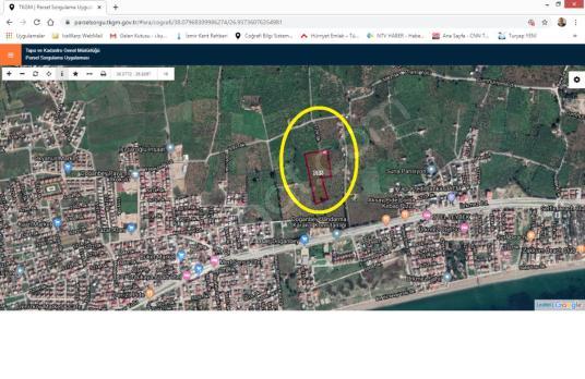 Ürkmez Merkez de Anayola Yakın Satılık Mandalina Bahçesi - Kat Planı