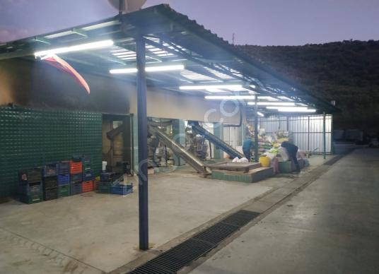 Selçuk Şirinyer Yolu Üzeri Satılık Zeytinyağı Fabrikası
