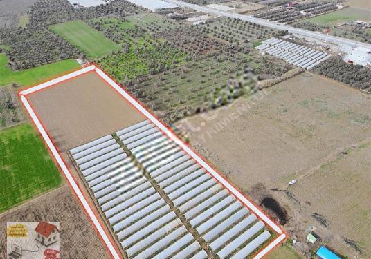 EGELAND Gayrimenkulden YATIRIMLIK Verimli 20.350 m2 Tarla - Site İçi Görünüm