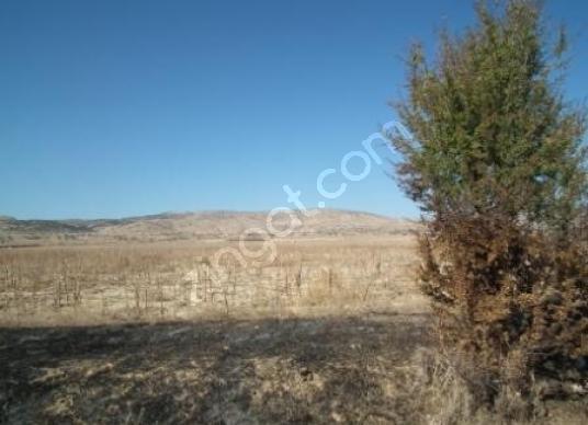 Afyon Başmakçı da 750 000 m2 arazi satılık - Arsa