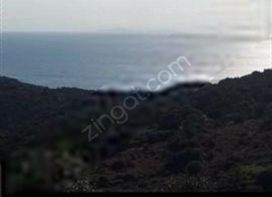 "Ayvacık Assos bölgesi Kuruoba köyü sahilinde""22 dönüm""1.250.000 - Manzara"