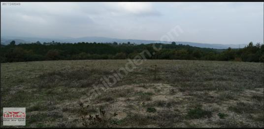 akarca  tümbüldek kaplıcalarında yatırımlık ve tesislik arazi