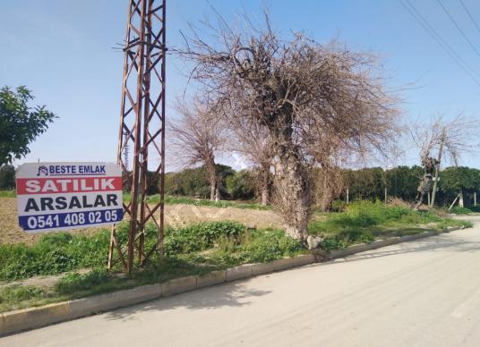 BESTE'DEN MIDIK MAH. ANA YOL ÜZERİ 3815 M2 İMARLI SATILIK ARSA - Sokak Cadde Görünümü