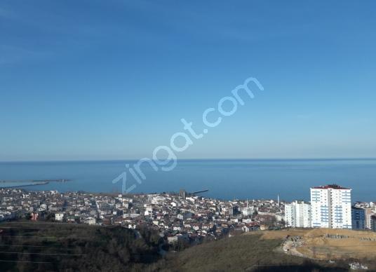 Fatsa Fatih'de Satılık Bol Oksijenli Deniz vetüm Fatsa manzaralı - Manzara