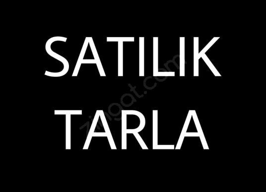 Ankara Polatlı Beyceğiz Mahallesi Satılık Tarla - Logo