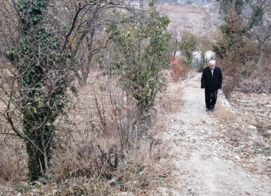 51-Amasya Merkez Yeşilyenice'de Satılık Bağ - Arsa