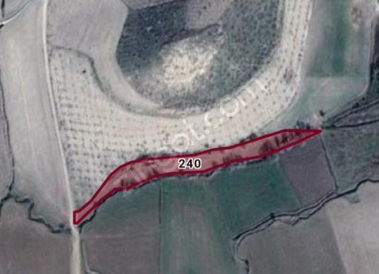 Karaköprü Cülmen'de Satılık Bahçe tarla - Harita