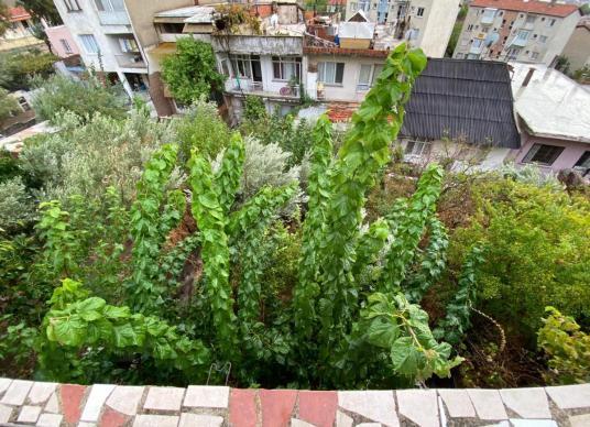 Karşıyaka Cumhuriyet Mahallesinde Satılık Müstakil Ev - Site İçi Görünüm