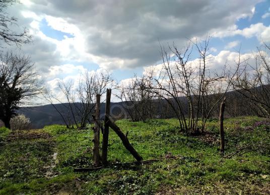 Kocaeli Kandıra'nın En Güzel Köyünde Yatırımlık Tarla - Arsa