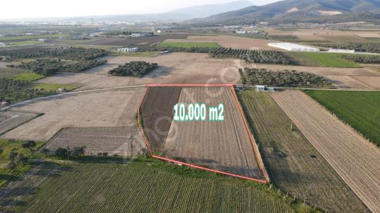EĞERCİ'DE 10.000 m2 SATILIK TARLA - Arsa