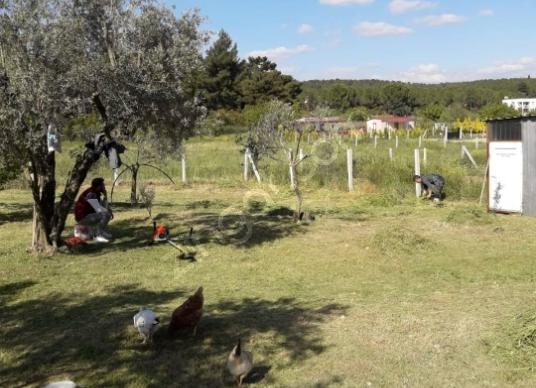 Torbalı Demirci'de Satılık Bahçe - Arsa