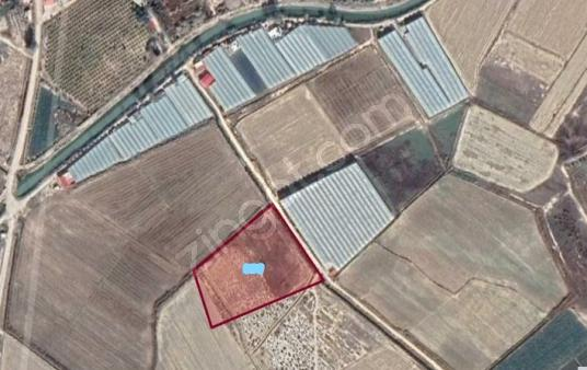 11000 square meters Field For Rent in Silifke, Mersin - undefined