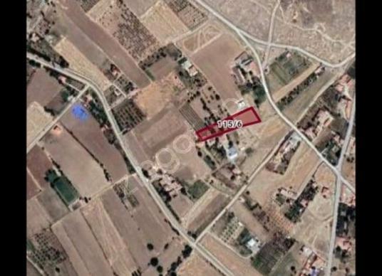 FY YILMAZER EMLAK DAN Baymış Köyü'de Satılık Bağ - Kat Planı