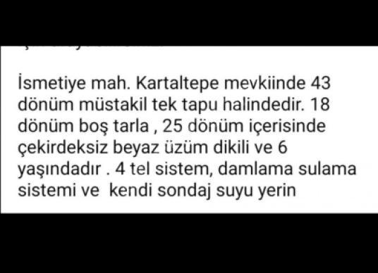 Alaşehir Kemaliye'de  43 dönüm Satılık Bağ 18 dönümü boş tarla