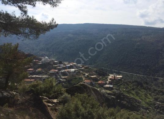 Milas Konak köyünde manzaralı dağ evi ve arsası