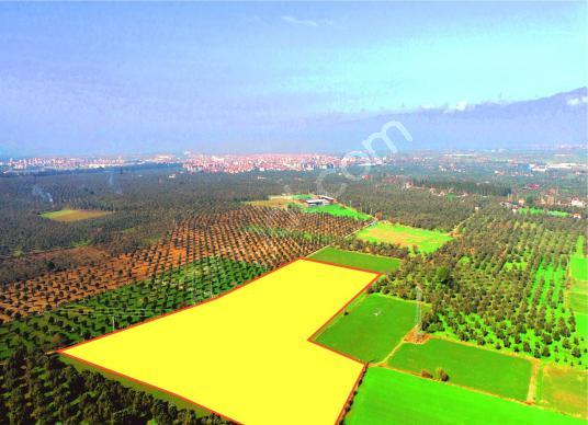 AKTİF'ten BURHANİYE YUNUS'ta*45.500 m2*CEZAEVİ KARŞISI TARLA