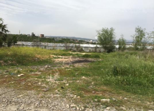 Erdemli Koyuncu'da Satılık Tarla