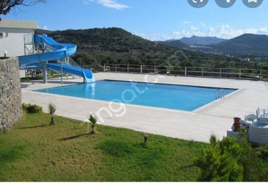 BODRUM GÜMÜŞLÜK SEZONLUK KİRALIK BAKIMLI HAVUZLU SİTEDE DAİRELER - Yüzme Havuzu